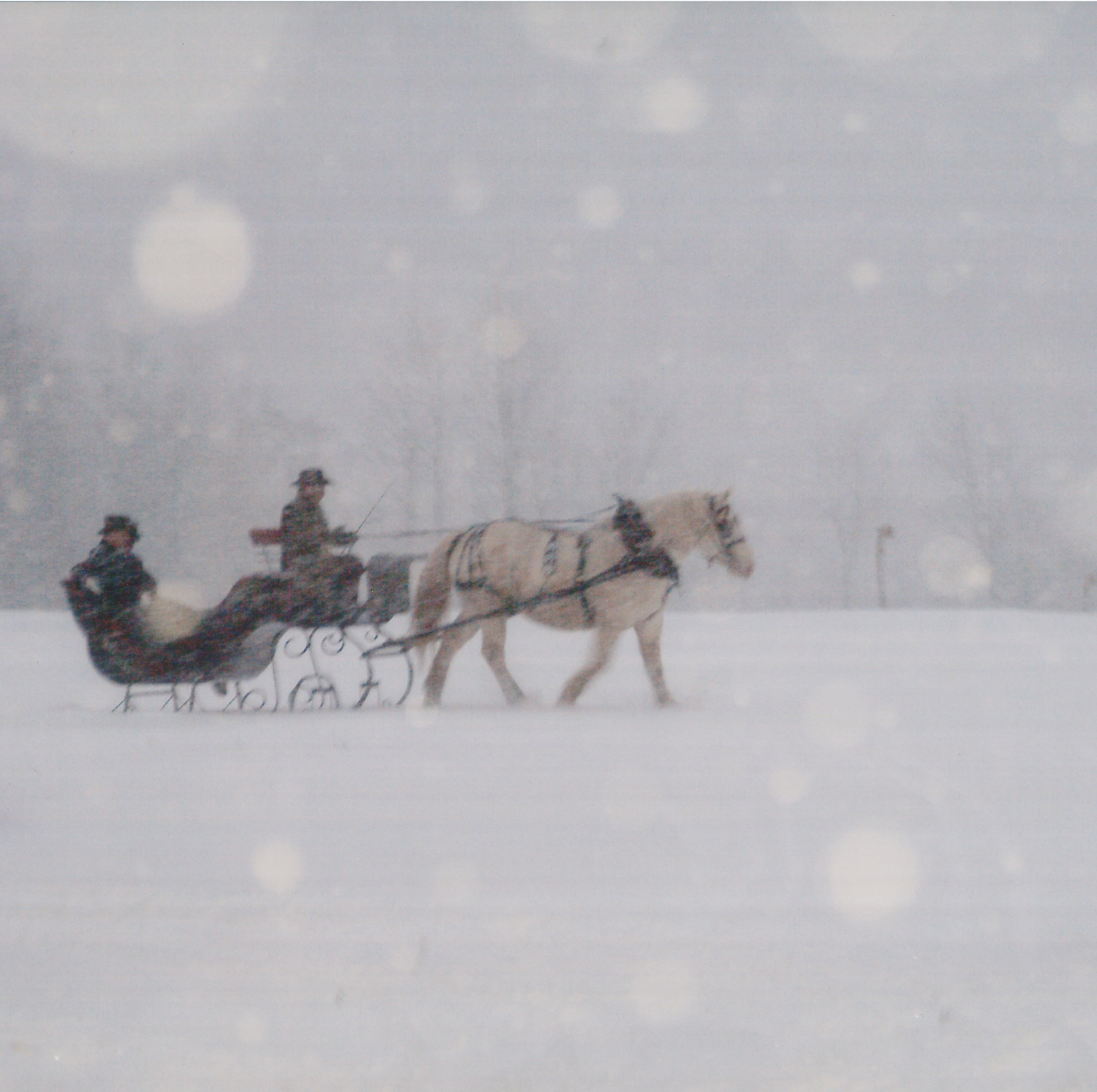 pin snow ride carriage - photo #39